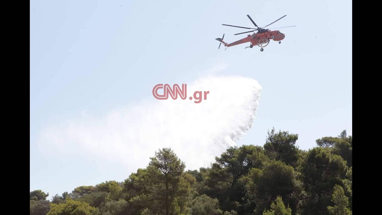 https://cdn.cnngreece.gr/media/news/2019/07/05/183227/photos/snapshot/66417052_2454951214593146_694276932207902720_n.jpg