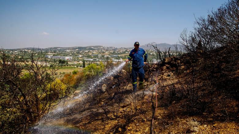 Φωτιά στα Σπάτα: Προσαγωγή 72χρονης ύποπτης για εμπρησμό από αμέλεια