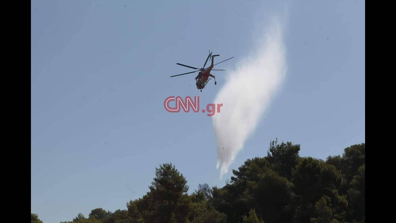 https://cdn.cnngreece.gr/media/news/2019/07/05/183283/photos/snapshot/66154418_686269835166279_7318444936024555520_n.jpg