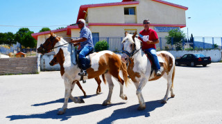 Εκλογές 2019: Πήγαν στο εκλογικό κέντρο για να ψηφίσουν με... άλογα