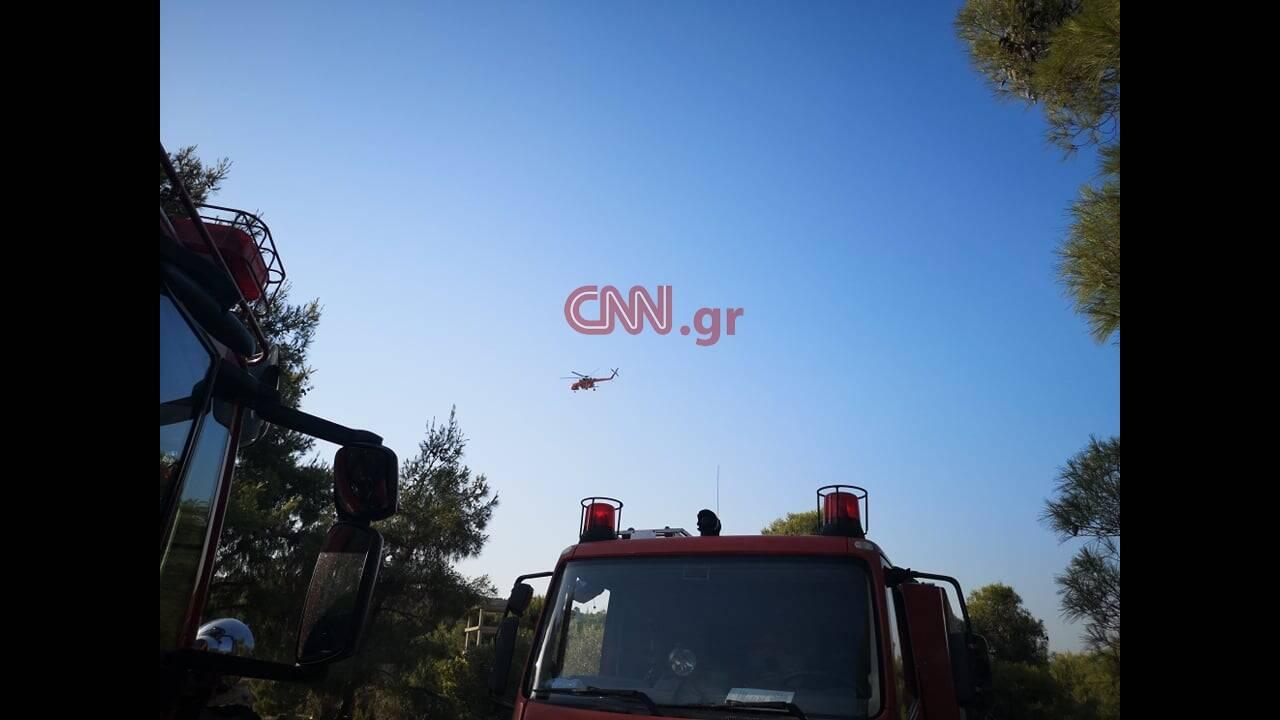 https://cdn.cnngreece.gr/media/news/2019/07/09/183837/photos/snapshot/66466292_2124250214532859_2135297618895437824_n.jpg