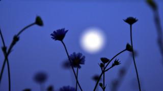 Με το βλέμμα στον νυχτερινό ουρανό: Πανσέληνος και έκλειψη το διπλό φαινόμενο που θα μας καθηλώσει