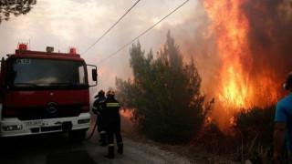 Πυρκαγιά στη Δίβρη: Οι φλόγες μπήκαν μέσα στο χωριό