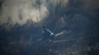 Πυρκαγιά στη Δίβρη Φθιώτιδας: Οι πρώτες εικόνες από τη μεγάλη φωτιά