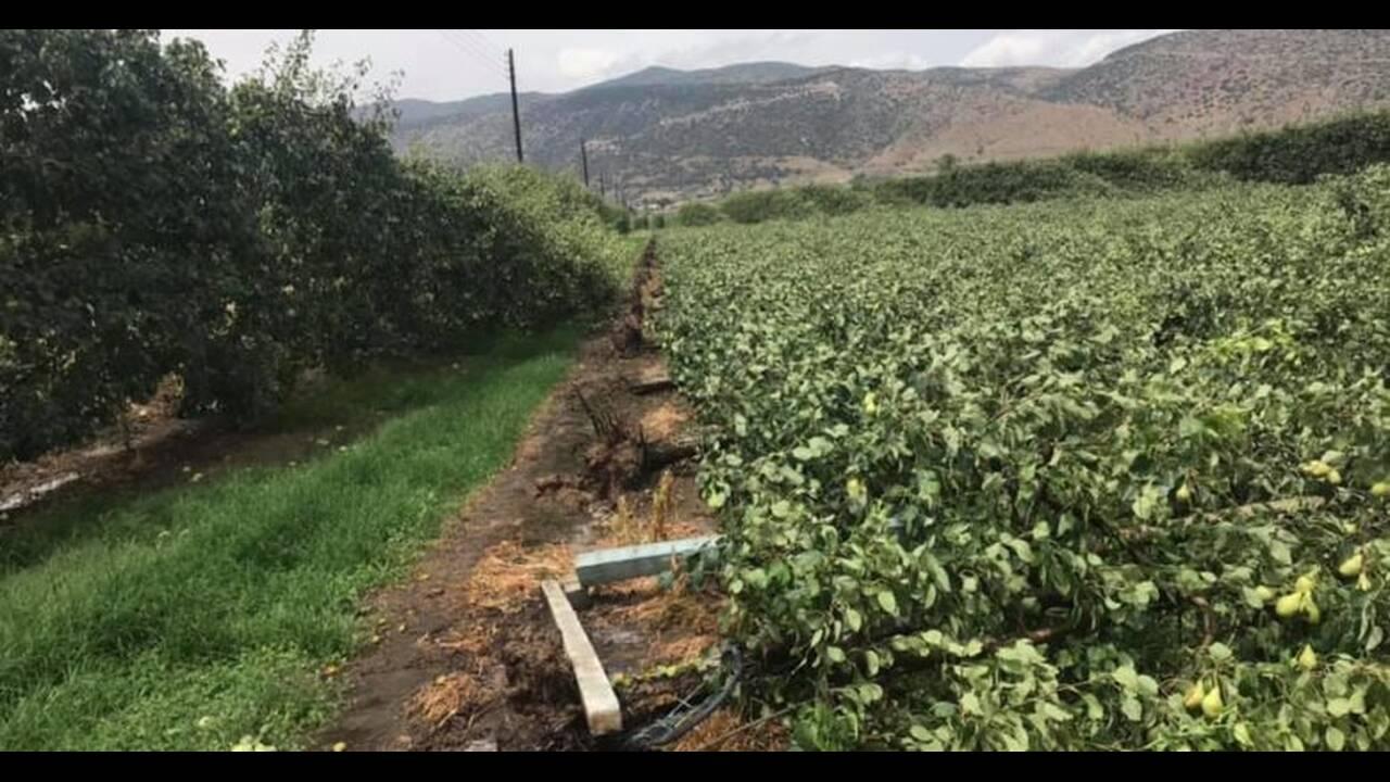 https://cdn.cnngreece.gr/media/news/2019/07/10/183955/photos/snapshot/tyrnabos.jpg