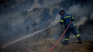 Πυρκαγιά στη Δίβρη: Δίπλα από τα σπίτια πέρασαν οι φλόγες