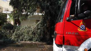 Προβλήματα από την κακοκαιρία στη Βόρεια Ελλάδα - Χωρίς ρεύμα οικισμοί στη Χαλκιδική