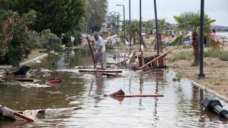 Χαλκιδική: Σε κρίσιμη κατάσταση ένας από τους δεκάδες τραυματίες