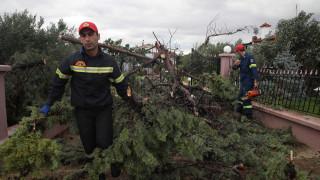 Συνολάκης: Θα είχαν σωθεί ζωές με σύστημα προειδοποίησης για καταστροφές