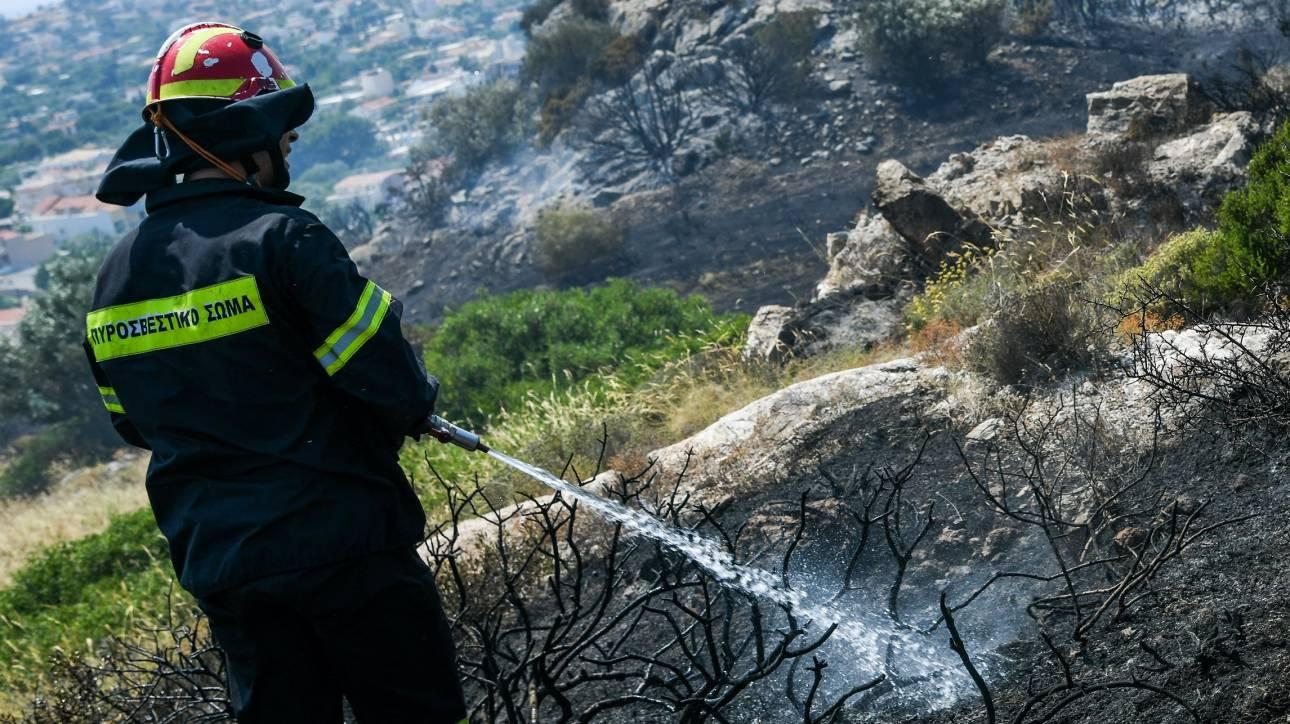Υπό έλεγχο η πυρκαγιά στον Μαραθώνα