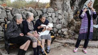Μυτιλήνη: Ξεριζώθηκε ο πλάτανος «σύμβολο» της προσφυγικής κρίσης