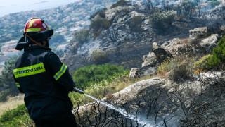 Υπό μερικό έλεγχο η φωτιά στη Λευκάδα
