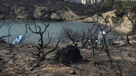 Οι εγκαυματίες, η αποκατάσταση, ο αμίαντος: Αυτοψία του CNN Greece στο Μάτι ένα χρόνο μετά