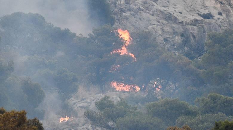 Φωτιά από κεραυνό στον Εθνικό Δρυμό της Οίτης
