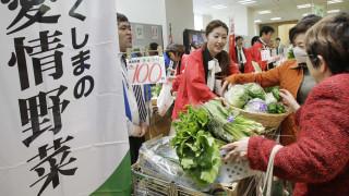 Πώς η συννεφιά προκάλεσε κρίση… αγγουριού στην Ιαπωνία