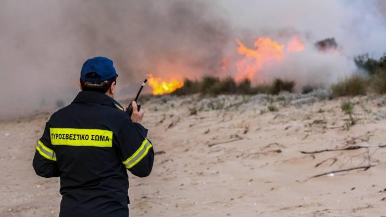 «Μάχη» της Πυροσβεστικής με δύο μεγάλες φωτιές σε Ναύπλιο και Θάσο