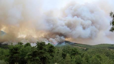 Σε πλήρη έλεγχο η πυρκαγιά στη Θάσο - Σε επιφυλακή παραμένουν οι πυροσβεστικές δυνάμεις