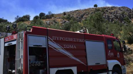 Φωτιά Κιθαιρώνας: Η εικόνα του μετώπου μετά την ολονύχτια «μάχη» της Πυροσβεστικής