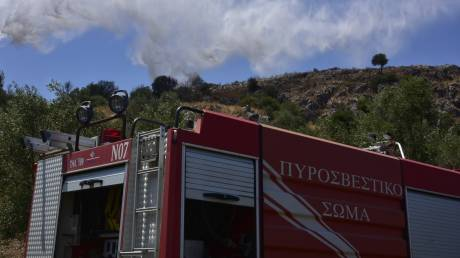 Σε ύφεση η φωτιά στον Κιθαιρώνα