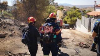 Φωτιά Μέγαρα: Σύλληψη 64χρονου για εμπρησμό