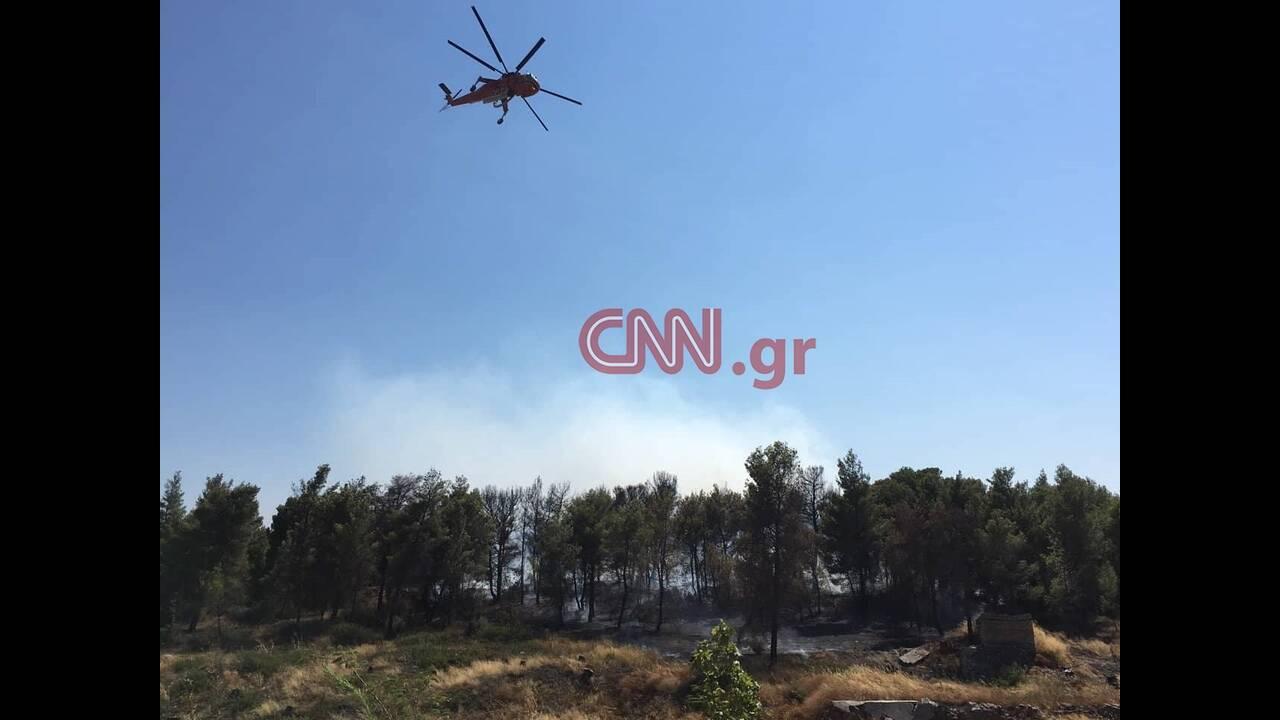 https://cdn.cnngreece.gr/media/news/2019/07/23/185268/photos/snapshot/rafina6.jpg