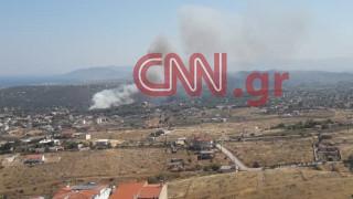 Φωτιά στη Ραφήνα: Ο γ. γ. Πολιτικής Προστασίας μεταβαίνει στο σημείο