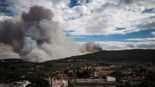 Φωτιά στην Τανάγρα: Ολονύχτια μάχη με τις φλόγες