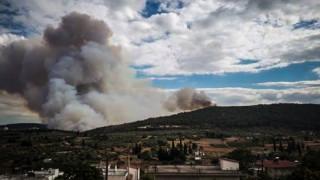 Φωτιά Τανάγρα: Συνεχίζεται η «μάχη» της Πυροσβεστικής με τις φλόγες