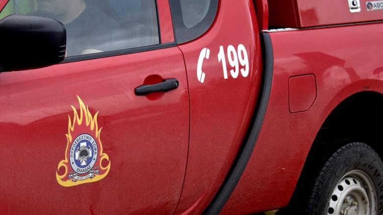 Αγρίνιο: Απείλησε με τσεκούρι πυροσβέστες που έσπευσαν να σβήσουν φωτιά στο σπίτι του