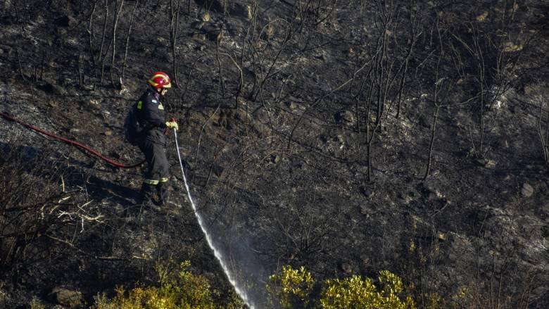 Υπό μερικό έλεγχο η φωτιά στην Κερατέα Αττικής