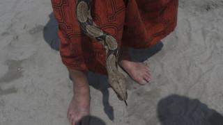 Ινδία: Άνδρας δάγκωσε φίδι που τον τσίμπησε;
