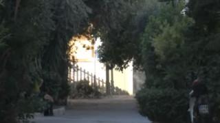 Σπίτι «κολαστήριο» στο Μοσχάτο: Βασάνιζε και σκότωνε εκατοντάδες ζώα για χρόνια