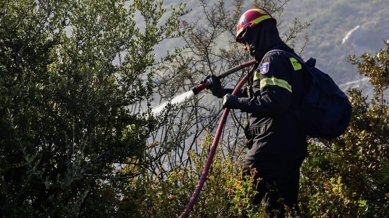 Πυρκαγιά στην περιοχή Γλυφονέρι της Κέρκυρας