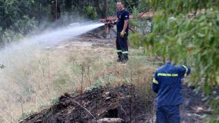 Υψηλός ο κίνδυνος εκδήλωσης πυρκαγιάς την Παρασκευή - Δείτε σε ποιες περιοχές