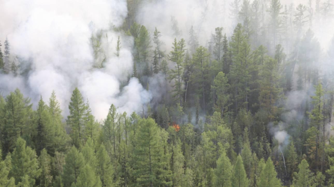 Τι σημαίνουν οι πυρκαγιές στην Αλάσκα για την αλλαγή στο κλίμα του πλανήτη;