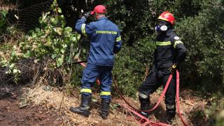 Τρεις φωτιές ξέσπασαν στον Ασπρόπυργο - Υψηλός ο κίνδυνος πυρκαγιάς και την Κυριακή