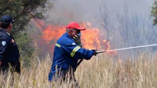 Υπό έλεγχο η φωτιά στην περιοχή των Φαρσάλων