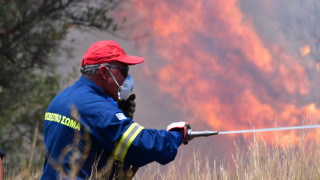 Φωτιά στην Ηλεία - Σε ύφεση η πυρκαγιά στην Αρχαία Ολυμπία