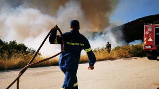 Υπό μερικό έλεγχο οι φωτιές σε Φθιώτιδα και Ηλεία