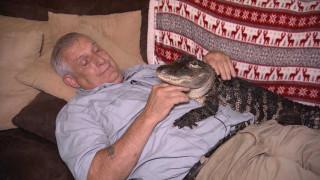 Γνωρίστε τον Wally, τον αλιγάτορα που προσφέρει συναισθηματική στήριξη