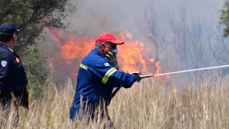 Σε ύφεση πυρκαγιά σε δάσος στην Κάτω Δροσιά Ερύμανθου