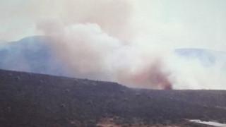 Μεγάλη πυρκαγιά σε δασική έκταση στον Μαραθώνα - Ενισχύονται οι δυνάμεις