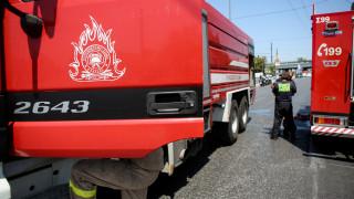 Θεσσαλονίκη: Ξέσπασε πυρκαγιά στους Ελαιώνες Πυλαίας