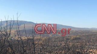 Οριοθετήθηκαν οι πυρκαγιές σε Μαραθώνα και Ζούμπερι – Φωτιά και στον Ασπρόπυργο