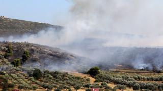 Συναγερμός στην Πυροσβεστική: Ξέσπασαν 59 φωτιές σε ένα 24ωρο