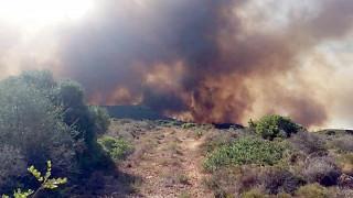 Μαίνεται η πυρκαγιά στην Ελαφόνησο: Εκκενώθηκαν κάμπινγκ, ξενοδοχεία και οικισμός