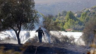 Πυρκαγιές σε Κιλκίς, Πρέσπες, Ηλεία και Ζάκυνθο