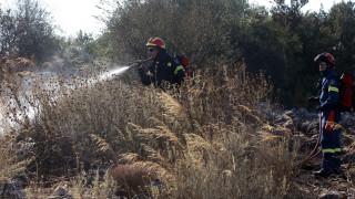 Πολύ υψηλός ο κίνδυνος για πυρκαγιά και τη Δευτέρα