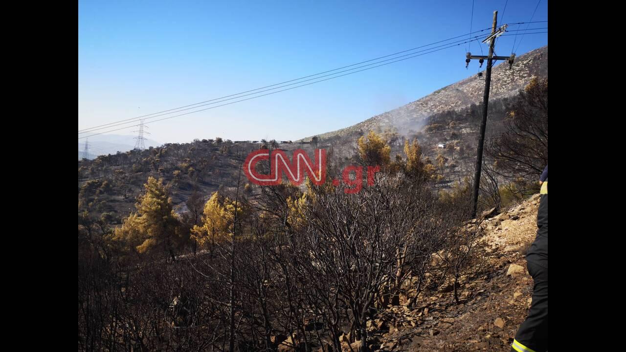 https://cdn.cnngreece.gr/media/news/2019/08/12/187276/photos/snapshot/1.jpg