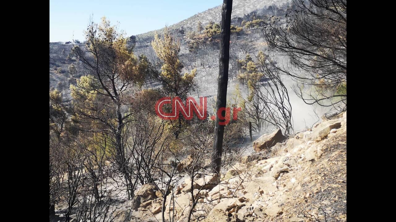 https://cdn.cnngreece.gr/media/news/2019/08/12/187276/photos/snapshot/2.jpg